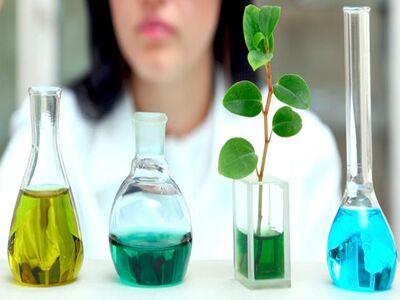 Вспомогательные и не только вещества в продукции компании NSP